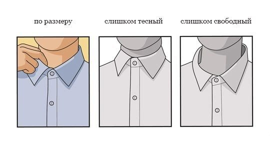 Ворот рубашки